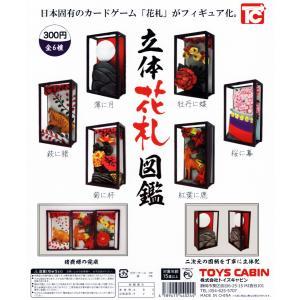 立体花札図鑑 全6種セット|amyu-mustore