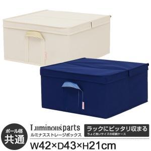 収納ケース 収納ボックス おしゃれ 幅45 奥行45 高さ21 LSB4243の写真