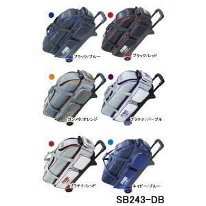 STORM/ボウリング3ボールキャリーバッグ/SB243-DB