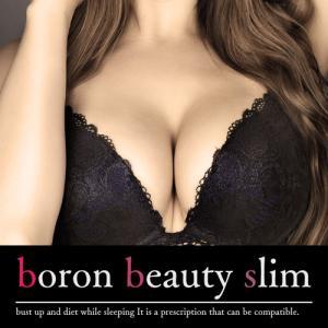 送料無料/ボロンビューティースリム(boron beauty slim)/バストケアサプリメント and-viii