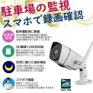 防犯カメラ ワイヤレス 屋外  監視カメラ Wi-Fi  ネットワークカメラ バレット  WiFi 300万画素 200万画素 1080P av-ipcam33ir3mp MIPC|andavision