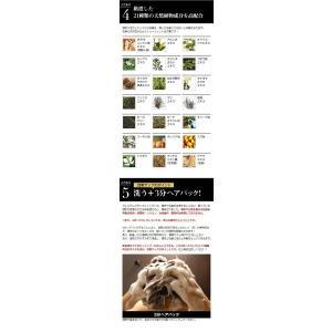 ヤフーランキング第1位 頭皮・毛髪のお悩みに!頭皮を目覚めさせる、新発想のスカルプシャンプー!プレミアムブラックシャンプー 。「スカルプシャンプー」|andbeauty|12