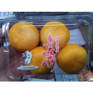 ハウスみかん 5パック 1パック5個入り 佐賀県産 フルーツギフト・アンデス