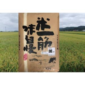 減農薬 減化学肥料 天日乾燥米 麓の米 5Kg  30年度産|andokometen