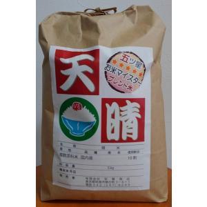 米 5kg 美味しいブレンド米「天晴(あっぱれ)」 |andokometen
