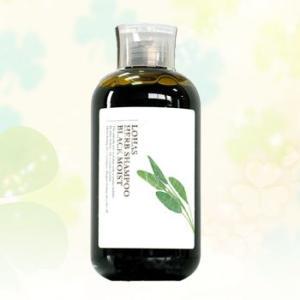 テクノエイト ブリーズベール ロハスハーブシャンプー ブラックモイスト 300ml|anemone-c