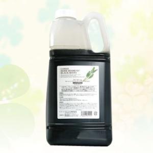 テクノエイト ブリーズベール ロハスハーブシャンプー ブラックモイスト 2000ml|anemone-c