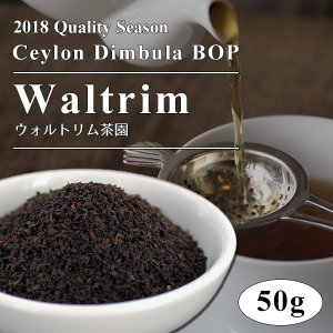 2018年 ディンブラ BOP ウォルトリム茶園 50g / 紅茶 茶葉 クオリティーシーズンティー シーズナルティー  数量限定 ange-yokohama