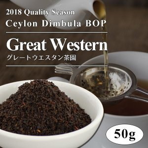 2018年 ディンブラ BOP グレートウエスタン茶園 50g / 紅茶 茶葉 クオリティーシーズンティー シーズナルティー  数量限定 ange-yokohama