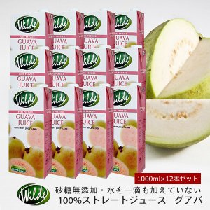 送料無料 砂糖・水を一滴も加えていない無添加 Wild ワイルド グアバジュース 1000ml×12本セット  賞味期限90日以上 ange-yokohama