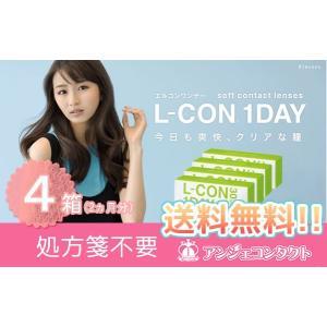 エルコンワンデー (L-CON 1DAY)30枚×4箱セット 2か月分|angecontact