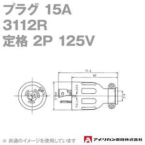 取寄 アメリカン電機 3112R プラグ 15A (定格:接地形2P 125V) (黒) SN|angelhamshopjapan