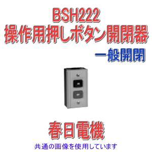 パトライト(旧春日電機) BSH 222 操作用ボタン開閉器 一般開閉 ボタン数2点 NN|angelhamshopjapan