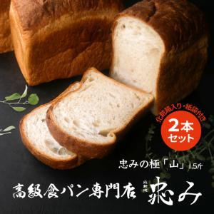 北新地 忠み (ただみ) 食パン 忠みの極 山 1.5斤×2本 高級食パン 天然酵母