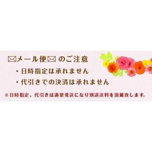 アディダス iPhoneケース iPhone6s 手帳型ケース おしゃれ ブランド アイフォン6ケース メンズ adidas 3ストライプ|angelique-girlish|06