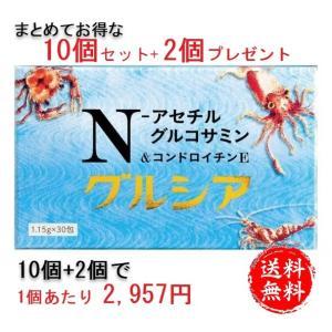 N-アセチルグルコサミン1000mgと進化型コンドロイチンE グルシア 10個+プレゼント2個セット