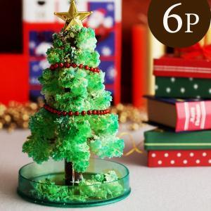 魔法の水を入れれば12時間でモコモコとツリーが生えてくる、マジッククリスマスツリーの6個セットです。...