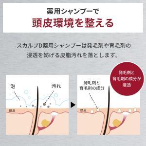 スカルプD 薬用スカルプシャンプー オイリー[脂性肌用] メンズシャンプー ノンシリコン アンファー 男性用    スカルプシャンプー 薬用シャンプー|angfa|02