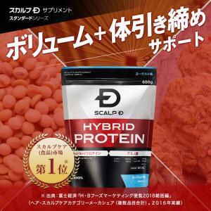 プロテイン 男性用 メンズ スカルプD サプリメント ハイブリッドプロテイン(カフェオレ味)600g 30回分|angfa|02