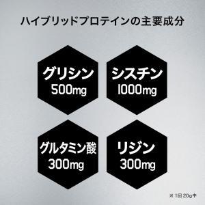 プロテイン 男性用 メンズ スカルプD サプリメント ハイブリッドプロテイン(カフェオレ味)600g 30回分|angfa|04