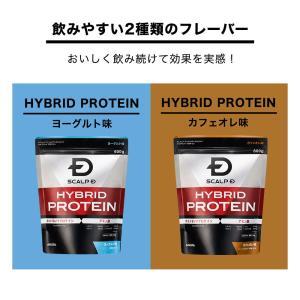 プロテイン 男性用 メンズ スカルプD サプリメント ハイブリッドプロテイン(カフェオレ味)600g 30回分|angfa|05