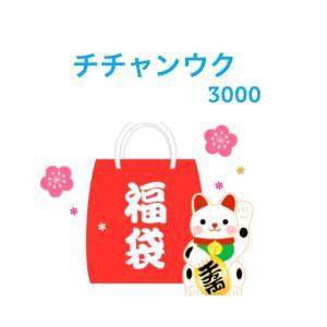 ★送料無料・3000円ポッキリ ★ チチャンウク...の商品画像