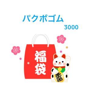 ★送料無料・3000円ポッキリ ★ パクボゴム パク・ボゴム 福袋 グッズセット3000 ak021-2