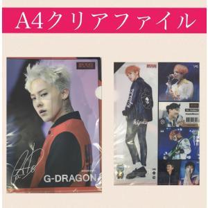 ★送料無料★ ジードラゴン G-DRAGON ビッグバン BIGBANG クリアファイル 韓流 グッズ sg026-4