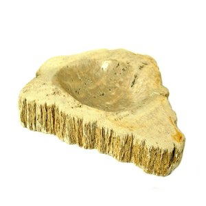 木の化石 灰皿 T [横幅約16cm 700g] アジアン雑貨 バリ雑貨 エスニック おしゃれな灰皿 変わった灰皿|angkasa