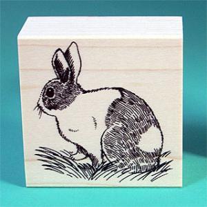 谷本ゴム印店【ペットスタンプ】Aタイプ・ウサギ(横)|animalstamp