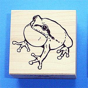 川名企画【いきものスタンプ】Vタイプ・アマガエル2(鳴き蛙)|animalstamp