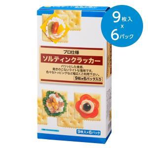 ソルティンクラッカー(9枚×6パック 54枚)|animo-store