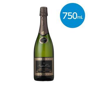アルナウ ドムス カヴァ/ブリュット・スペイン(スパークリングワイン)750ml|animo-store