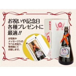安城の地ビール「デンビール」オリジナル記念ボトル(1リットル1本)|anjo-denbeer|02