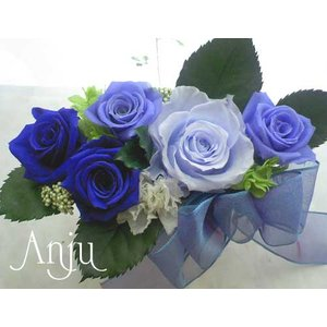 プリザーブドフラワー ギフト 幻の3色の青い薔薇フラワーアレンジメント anju87