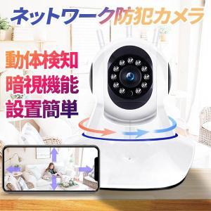 赤ちゃんモニター 防犯カメラ 243万画素 遠隔監視カメラ ペット ベビーモニター ペットモニター 暗視 動体検知 ネットワークカメラ ls-f2の画像