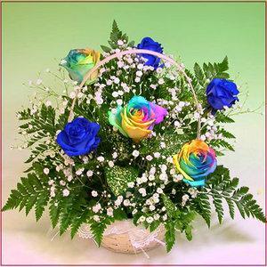 フラワーアレンジメント バラ  レインボー バラ 青い バラ 夢のバラ アレンジ ギフト プレゼント 歓送迎 送別 退職 贈り物 卒業|anne