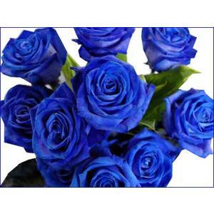 花束 アレンジ バラ ギフト 青いバラ ブルー ローズ 10本以上から 誕生日の花 薔薇 ギフト プレゼント 歓送迎 送別 退職 贈り物 卒業|anne