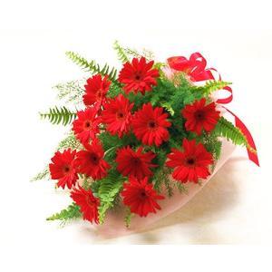 ガーベラレッド赤の 花束  ブーケ 花束 ギフト プレゼント 歓送迎 送別 退職 贈り物 卒業 anne