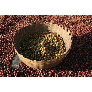 厳選ストレートコーヒー豆「エチオピア フンダ・オリ」(フレンチロースト・200g)/自家焙煎スペシャルティコーヒー珈琲豆|anokoro
