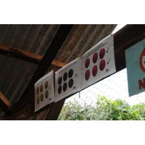 厳選ストレートコーヒー豆「ケニア キウニュ AB」(シティロースト・200g)/自家焙煎スペシャルティコーヒー珈琲豆|anokoro|03