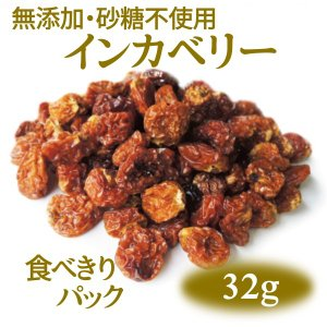 ポイント消化 インカベリー(ゴールデンベリー) 無添加・砂糖不使用ドライフルーツ [税込300円食べきりパック]|ansans