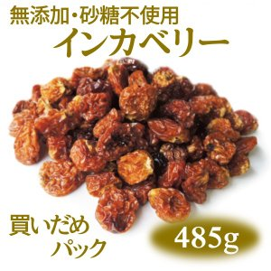 インカベリー(ゴールデンベリー) 無添加・砂糖不使用ドライフルーツ [税込2,500円買いだめパック]|ansans