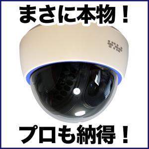 ダミーカメラ/屋内ドーム 1台 防犯カメラ|anshinlife