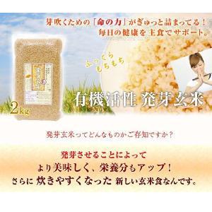 コジマ 有機活性発芽玄米2kg x2 袋発芽玄米【あすつく対応】【送料無料】 anshinsyokuhinkan 02