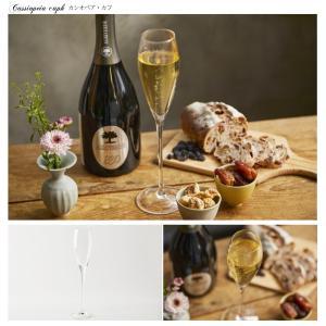 ワイングラスセット フルートシャンパーニュ 6脚セット 210ml CachetteSecreteワイングラス シャンパングラス フルートグラス antbeeshop 15