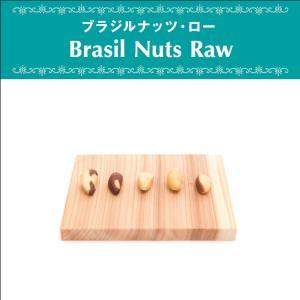 ブラジルナッツ ブラジル産 ローナッツ 無添加 無漂白 砂糖不使用 オーガニック ヴェガン ベジタリアン ローフード ポリフェノール 自然食品 天然素材 1000g antbeeshop
