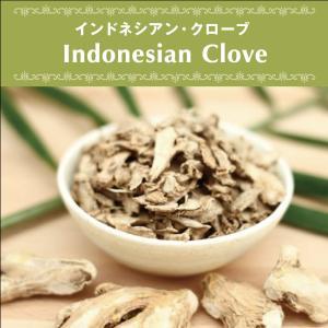 クローブ インドネシア産 無農薬 無添加 無漂白 砂糖不使用 オーガニック ヴィーガン ベジタリアン ローフード ポリフェノール 自然食品 天然素材 25g|antbeeshop