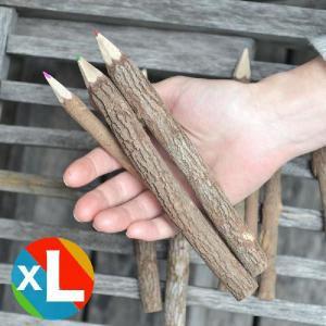 AD2 ネイチャーペンシル マルチカラー XL 木の色鉛筆10本セット 色鉛筆 木 antdesignstore