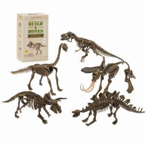 ダイナソー3Dパズル 恐竜 化石 パズル プラモデル 模型 ブラキオサウルス ティラノサウルス ステゴサウルス マンモス トリケラトプス おしゃれ か
